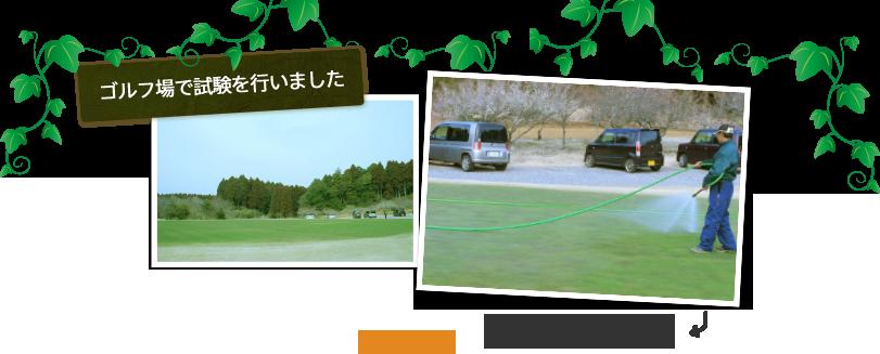 ゴルフ場で試験を行いました
